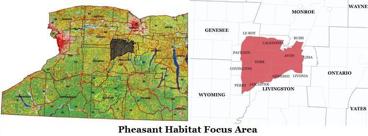 New York State Pheasant Habitat Focus Area