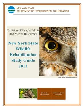 rehabiltator exam study guide cover image