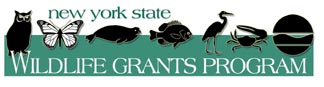 New York's State Wildlife Grants Program Logo