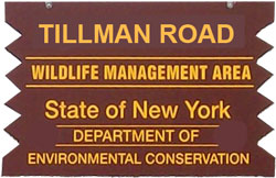 Tillman Road brown sign