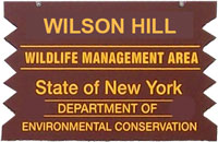 Wilson Hill Brown Sign