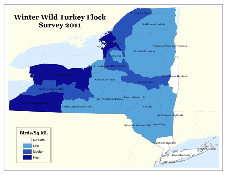 2011 Winter Wild Turkey Survey map by WMU Aggregate