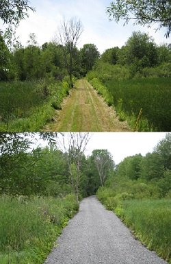 Before and after photos of improvements to access road at a WMA